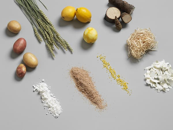 Nature's properties organically imitated: Pulp combines the fire-retardant properties of grass roots, the water-repellent properties of lotus flowers and the strength that comes from the catalytic combination of potatoes, vegetable wax and citrus fruits. © Baux