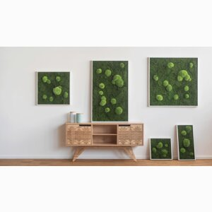 Moss pictures without care in rich green from the manufacturer