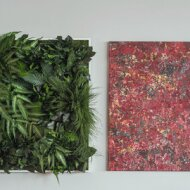Naturally conserved plant pictures without care