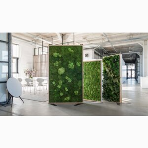 Room divider made of preserved moss without care