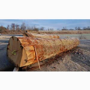Harwood logs