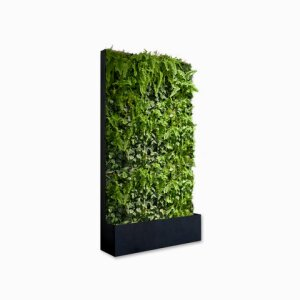 THE GREEN ROOM DIVIDER Green Wall