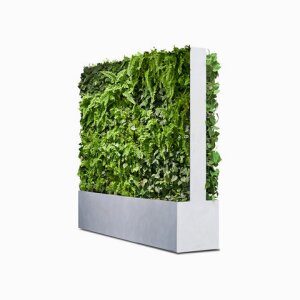 THE GREEN ROOM DIVIDER Green Wall Dual