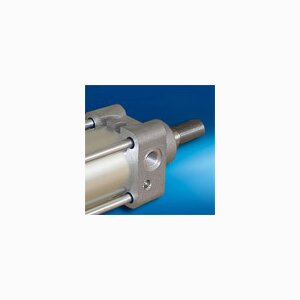 Pneumatic Cylinder with Guided Piston Rod