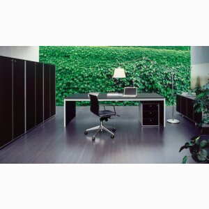 Bianco Nero / Corium / OAK - Executive Office System