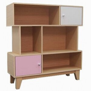 Bookcase with 2 doors