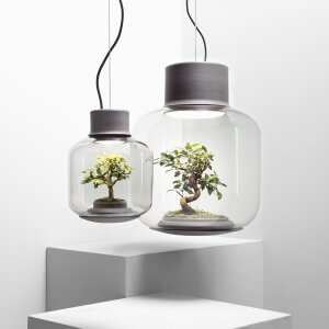 An ecosystem behind glass: the Mygdal plant lamp by Nui Studio