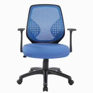 Executive Office Chair D5