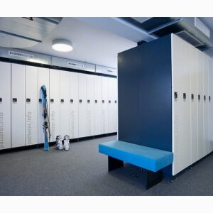 Ski storage solutions for individual or family lockers