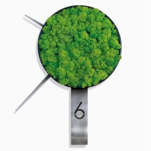 Green Clock Brushed Inox