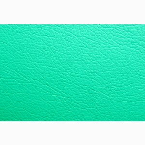 Sofa Leather green