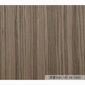 Fashionable Ordinary Materials EV.EB704S