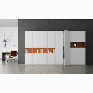 basic S cabinet and shelving systems