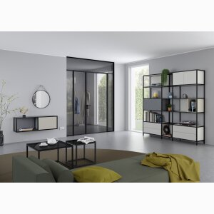 raumplus Swing Door Slim Line double leaf with fanlight and side panel